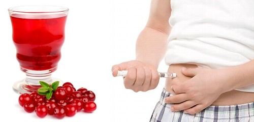 Cranberry Good for Obesity